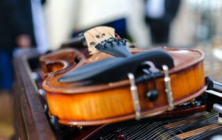 side of a violin